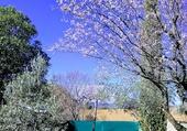 Puzzle Pâques en Hte Provence