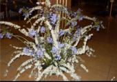 Composition blanche Bleue