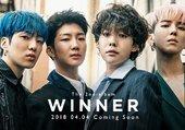 Winner - Everyday