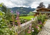 Chalet et son jardin