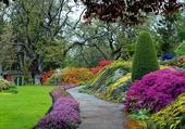 Superbe allée de jardin
