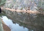 reflet dans le lac bleu à Erquy
