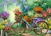 Vélo dans le jardin