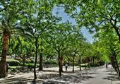 Belle promenade dans le parc