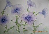 fleurs a l aquarelle