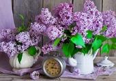 La bonne senteur du lilas