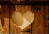 Coeur dans le bois