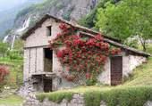 Reserve de foin dans la montagne