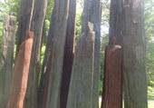sculpture personnages chaumont sur loire