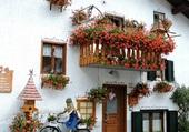 Maison fleurie -Dolomites - Italie