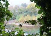 Regard sur la rivière