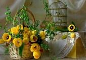 Joli panier de tulipes