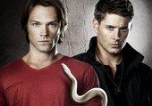 dean & sam (supernatural)