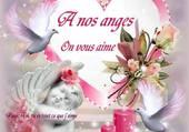 pour nos petits anges
