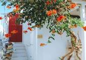 bignonne en Grèce