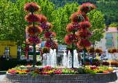 Puzzle Rond point fleuri