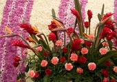 Tapis et bouquet de fleurs
