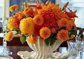 mélange de fleurs orangées