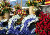 Bel assortiment de fleurs