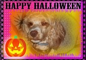 Rubis fête Halloween