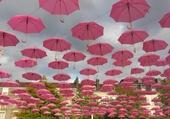 La valse des parapluies roses