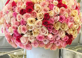 gros bouquet de roses pales