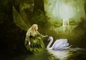 La fée et le cygne