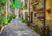 Lucca, rue fleurie