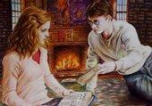 Puzzle Harry Potter et Hermione Granger