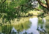 coule la riviere