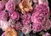 Puzzle joli bouquet de pivoines