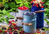 fruits et pots à lait