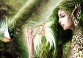 L'elfe et la fée