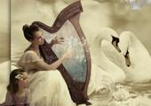 douce musique de la harpe