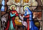Vitrail de la Nativité (Joigny)