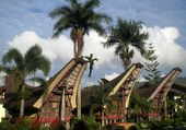 Habitations Toraja