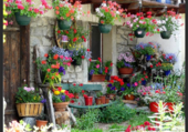 Ancienne maison fleurie