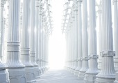 COLONNES BLANCHES