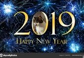 Bonne Année avec LILI