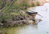 la barque du pecheur