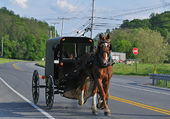 Buggy amish aux USA