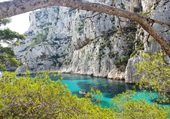 Calanques la nature sauvage