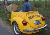 VW 1CV