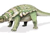 Puzzle Dinosaure03