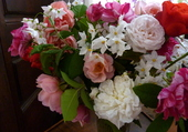 fleurs du jardin
