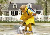 Sous la pluie - Donald Zolan