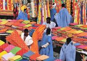 CHATOYANTE AFRIQUE