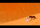 TRAVERSEE DU DESERT