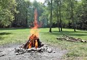 Puzzle feu de bois
