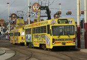 Puzzle tram
